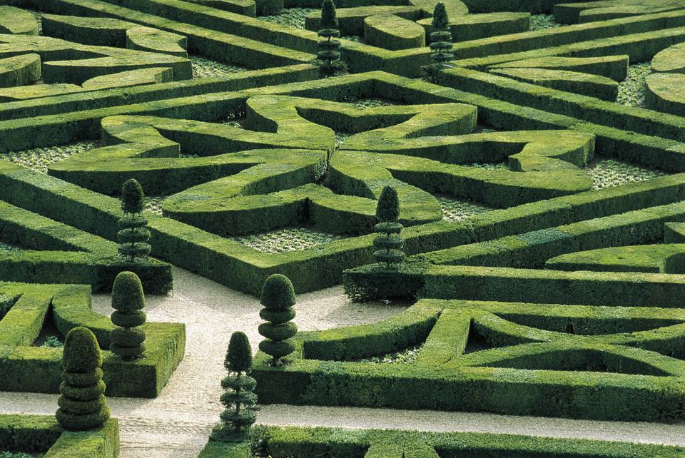 France, Centre, Loire Valley, Villandry Castle, gardens
