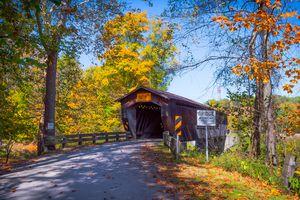 Footbridge and fall foliage in Cleveland