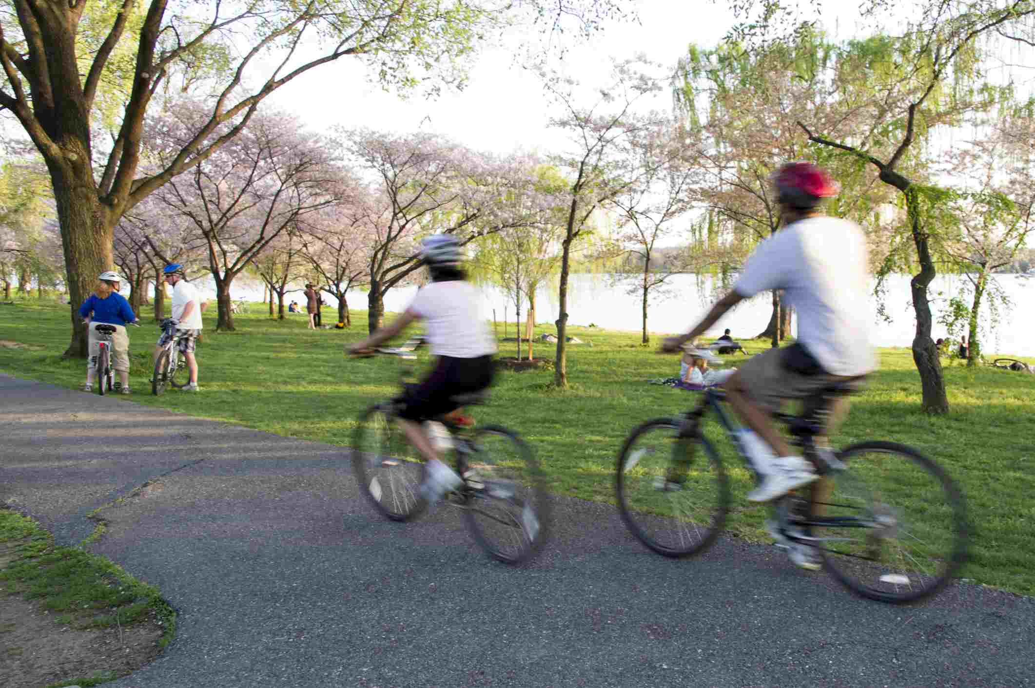 Ciclismo en West Potomac Park, Washington DC