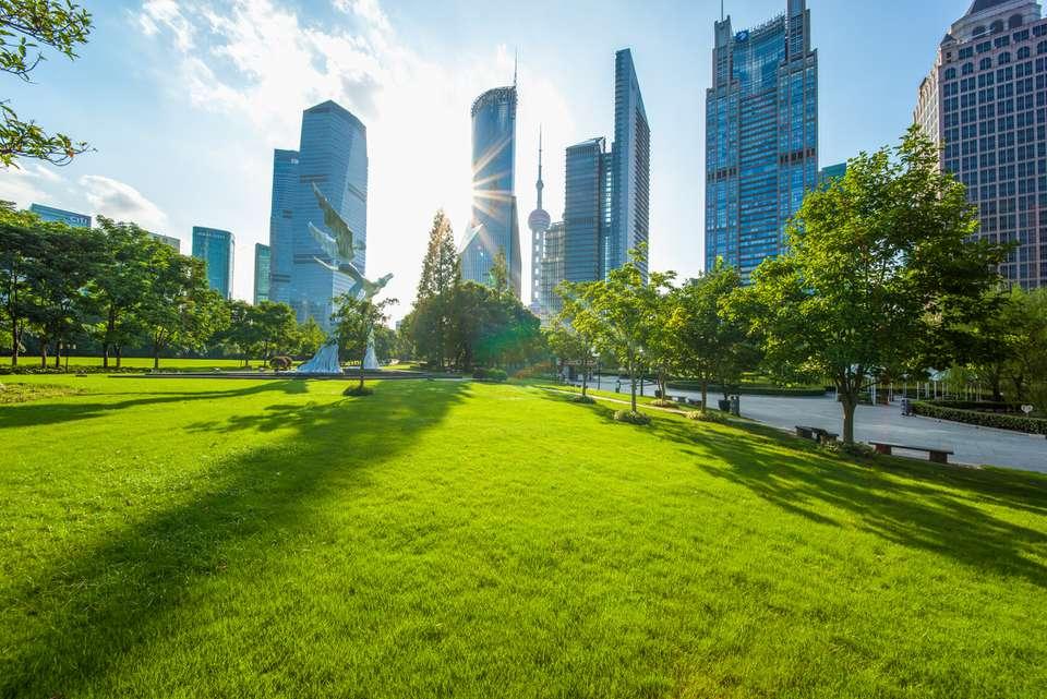 Césped verde en un parque en Shanghai