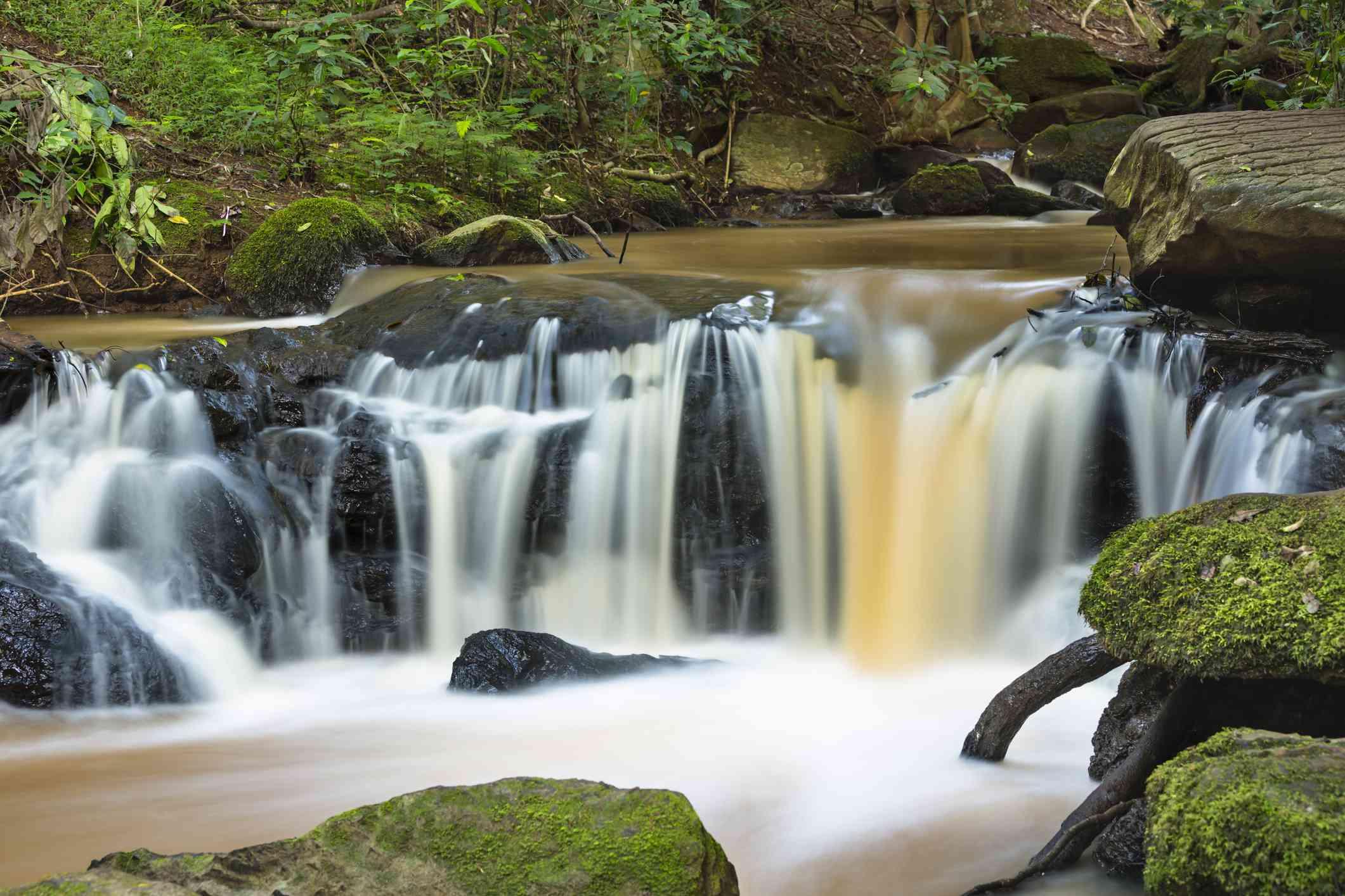 Waterfall in Karura Forest, Nairobi