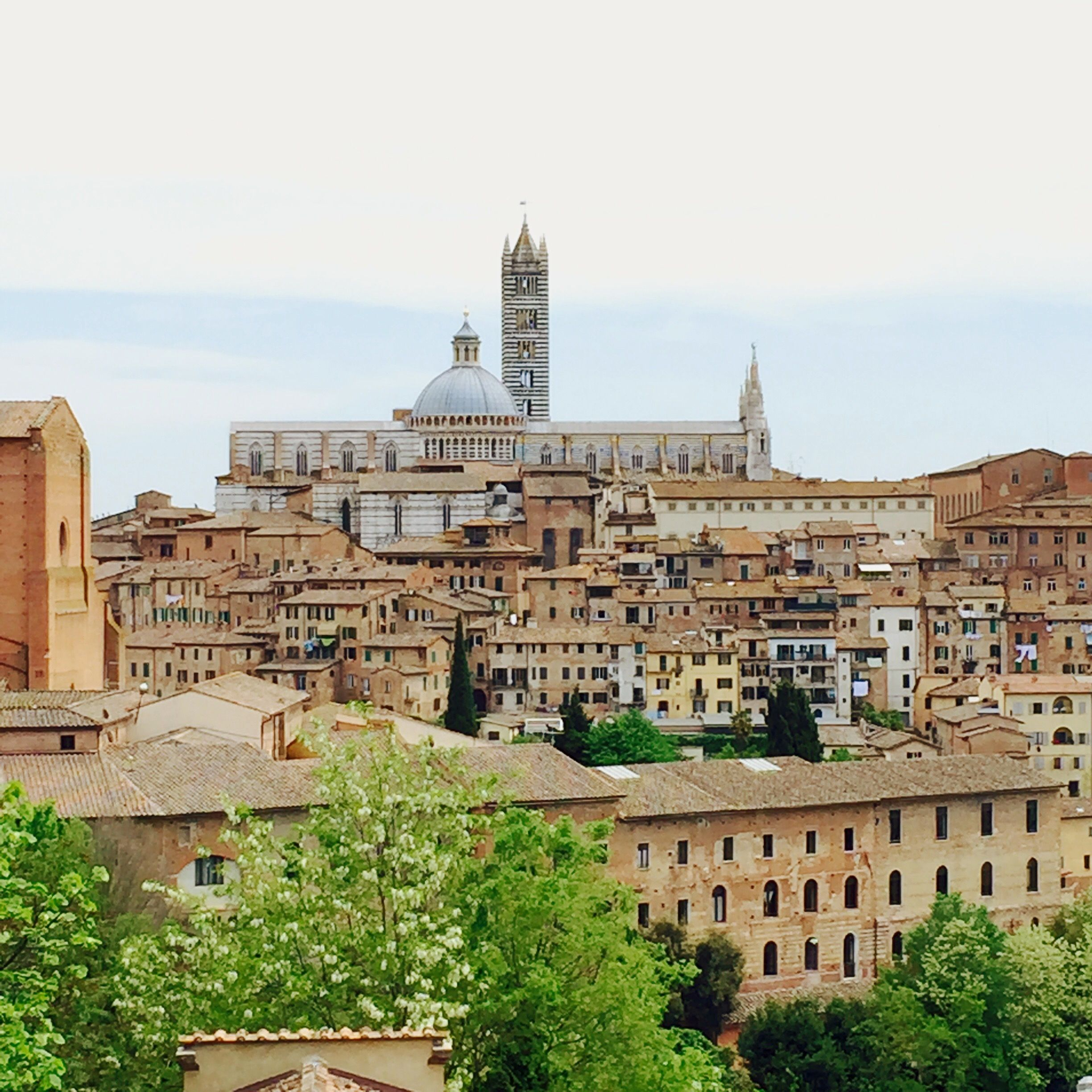 Siena Cathedral standing out among the city.