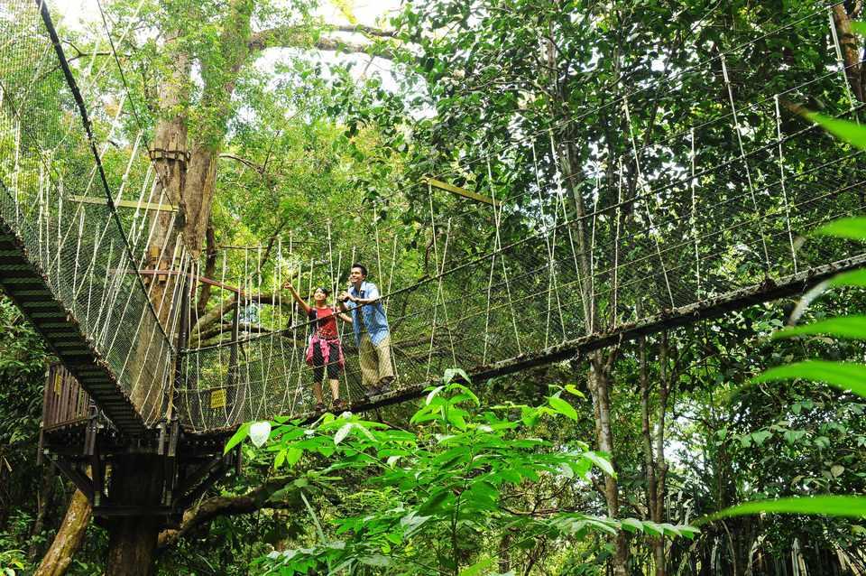 Canopy Walk, Penang National Park, Malaysia