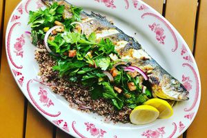 Whole roasted branzini, quinoa and whole herb tabbouleh on a red and white plate