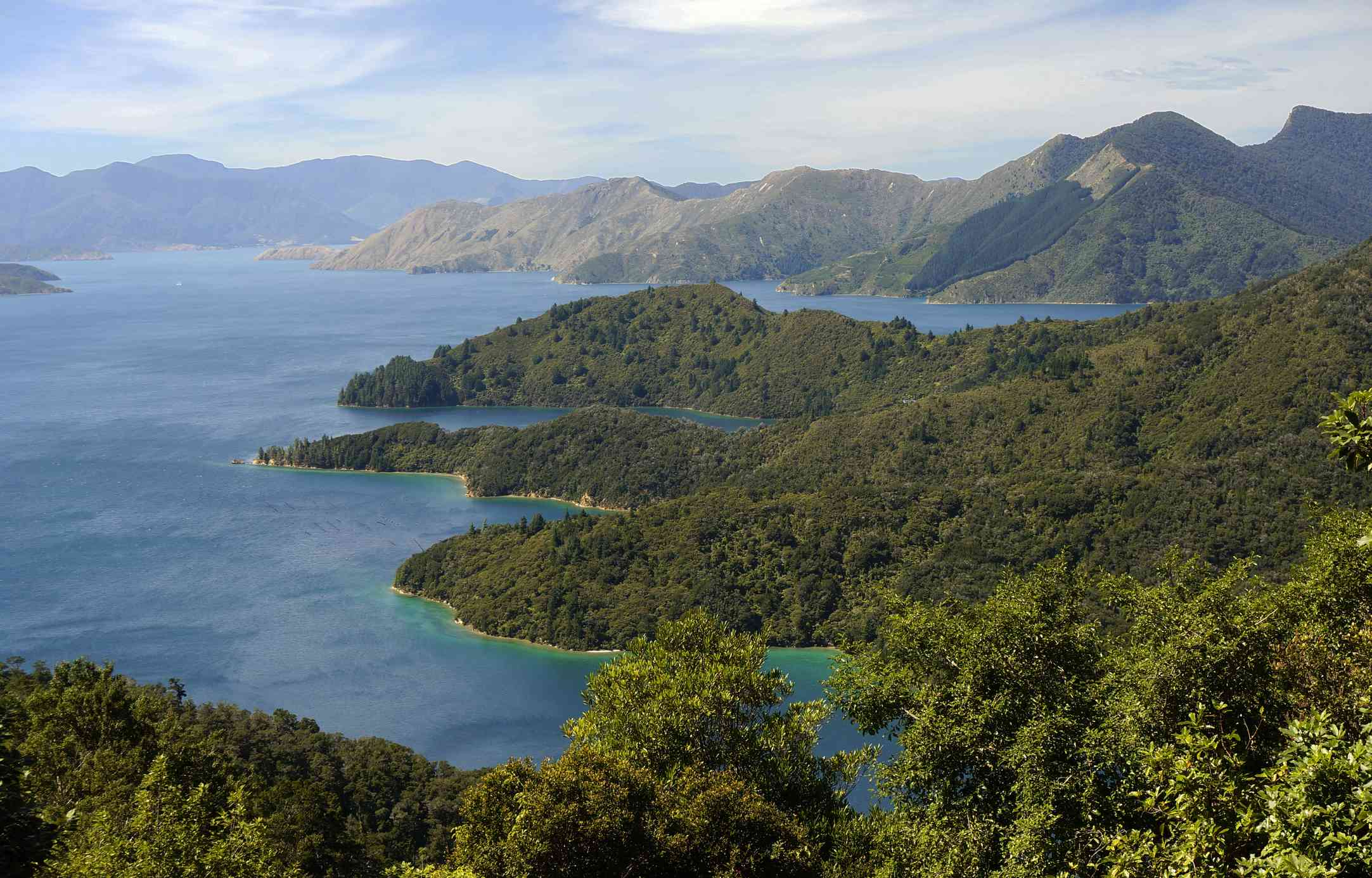 forested mountainous headlands surrounded by blue sea