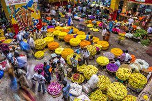 Bangalore flower market.