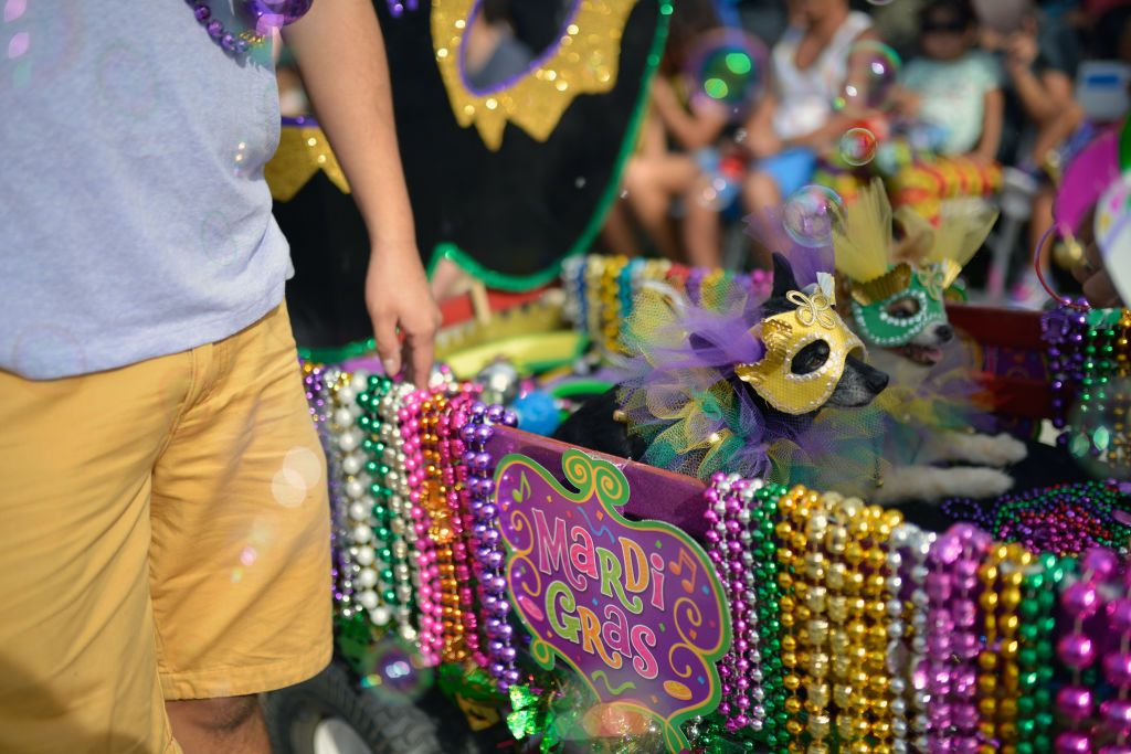 Events In New Orleans March 2020.March Events In New Orleans