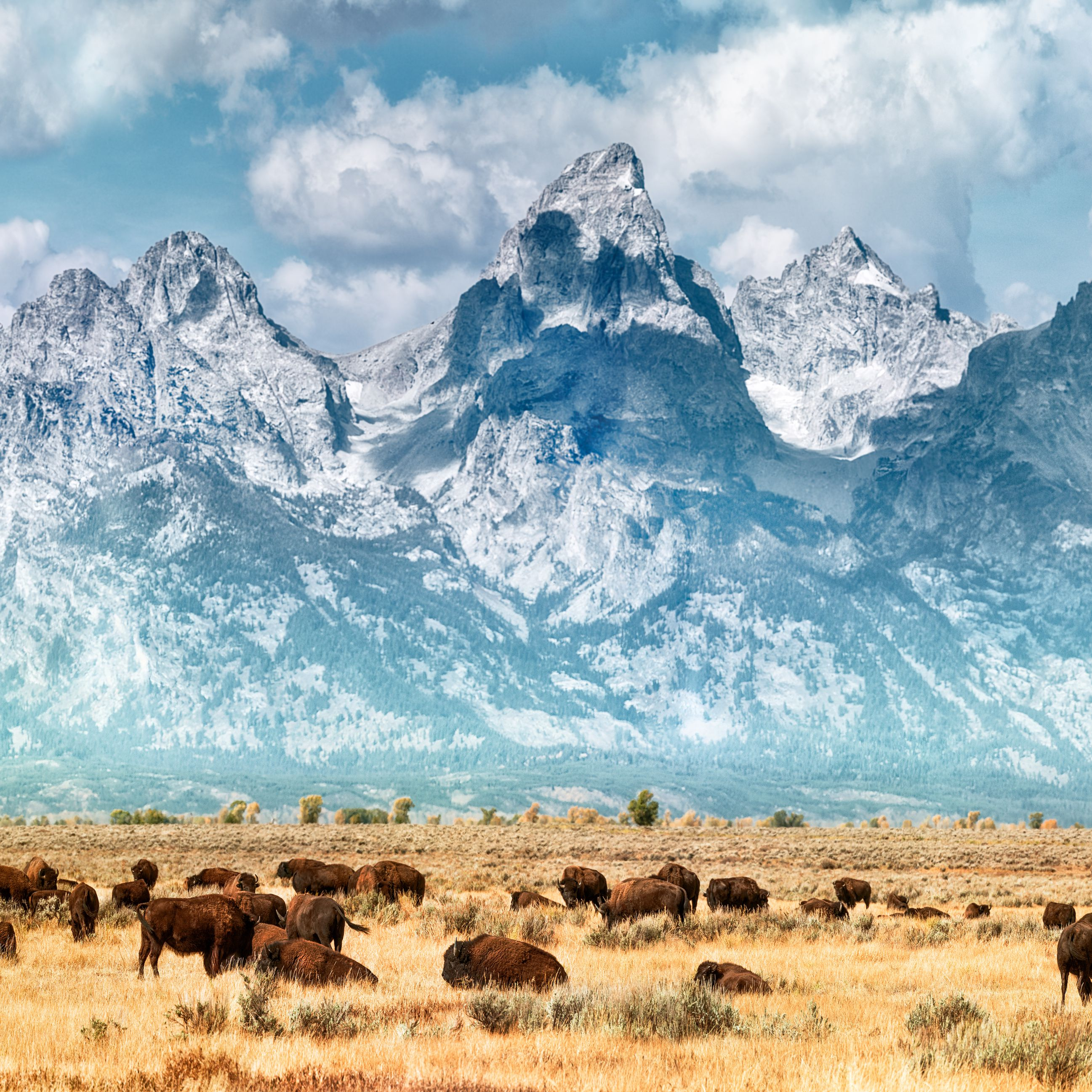 Top 10 Wyoming Attractions