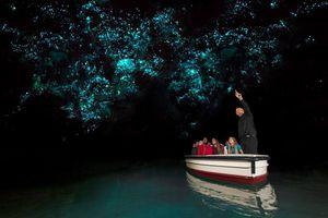 A boat toar of Waitomo Caves