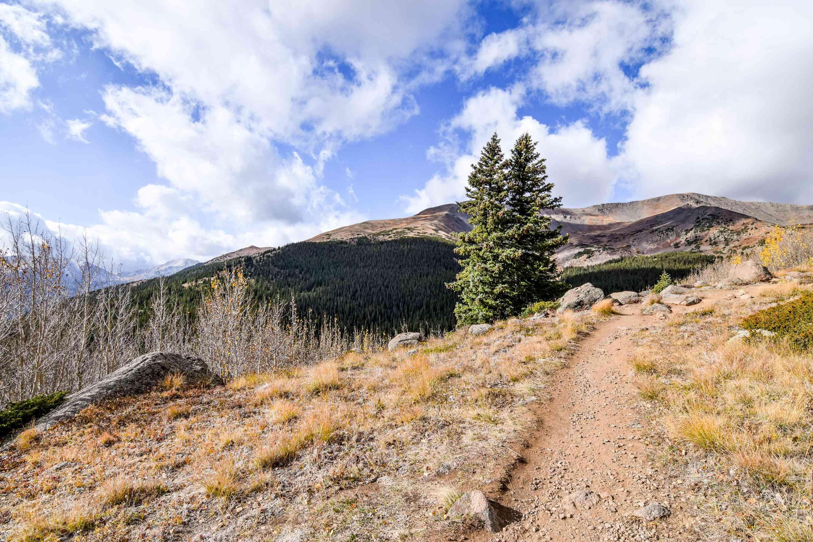Climbing Mount Elbert