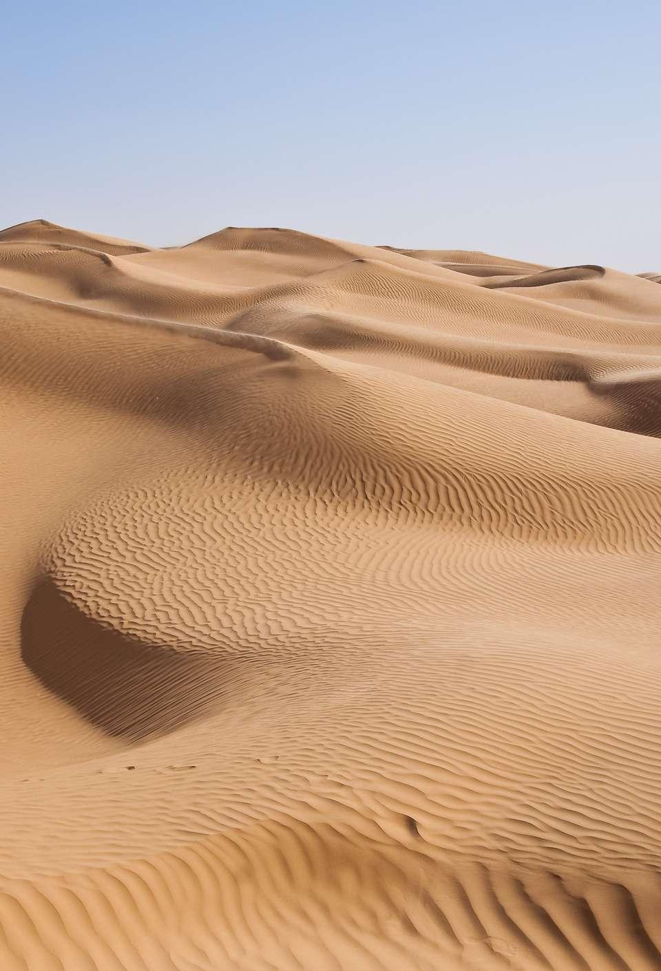North Africa, Tunisia, Kebili province, East Great Erg, the Sahara