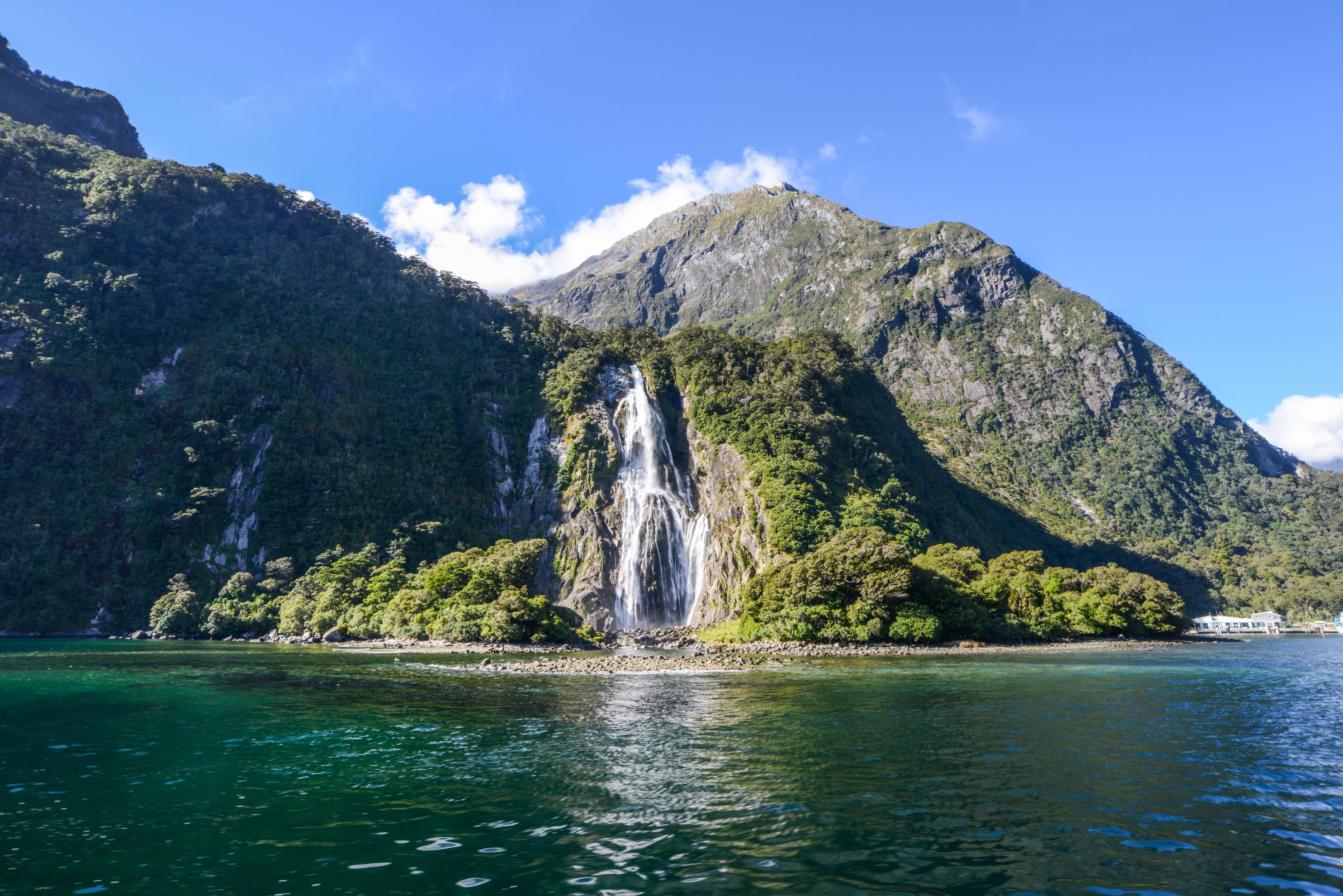 January in New Zealand: Weather and Event Guide