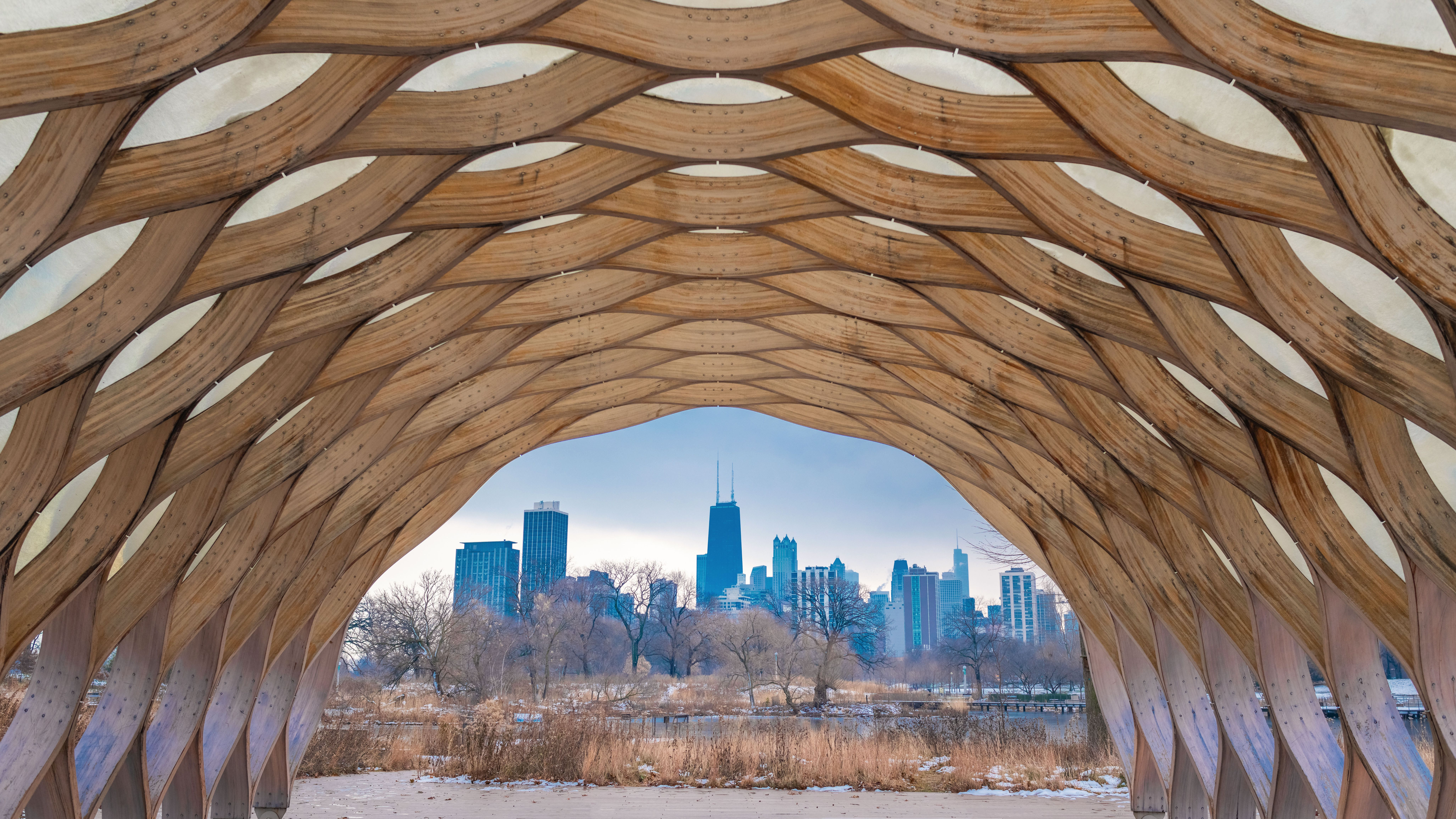 A Visitor's Guide to Lincoln Park Zoo