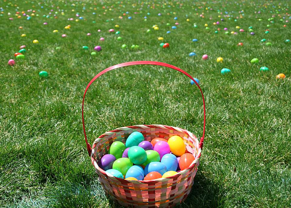 Easter egg basket on field covered with eggs