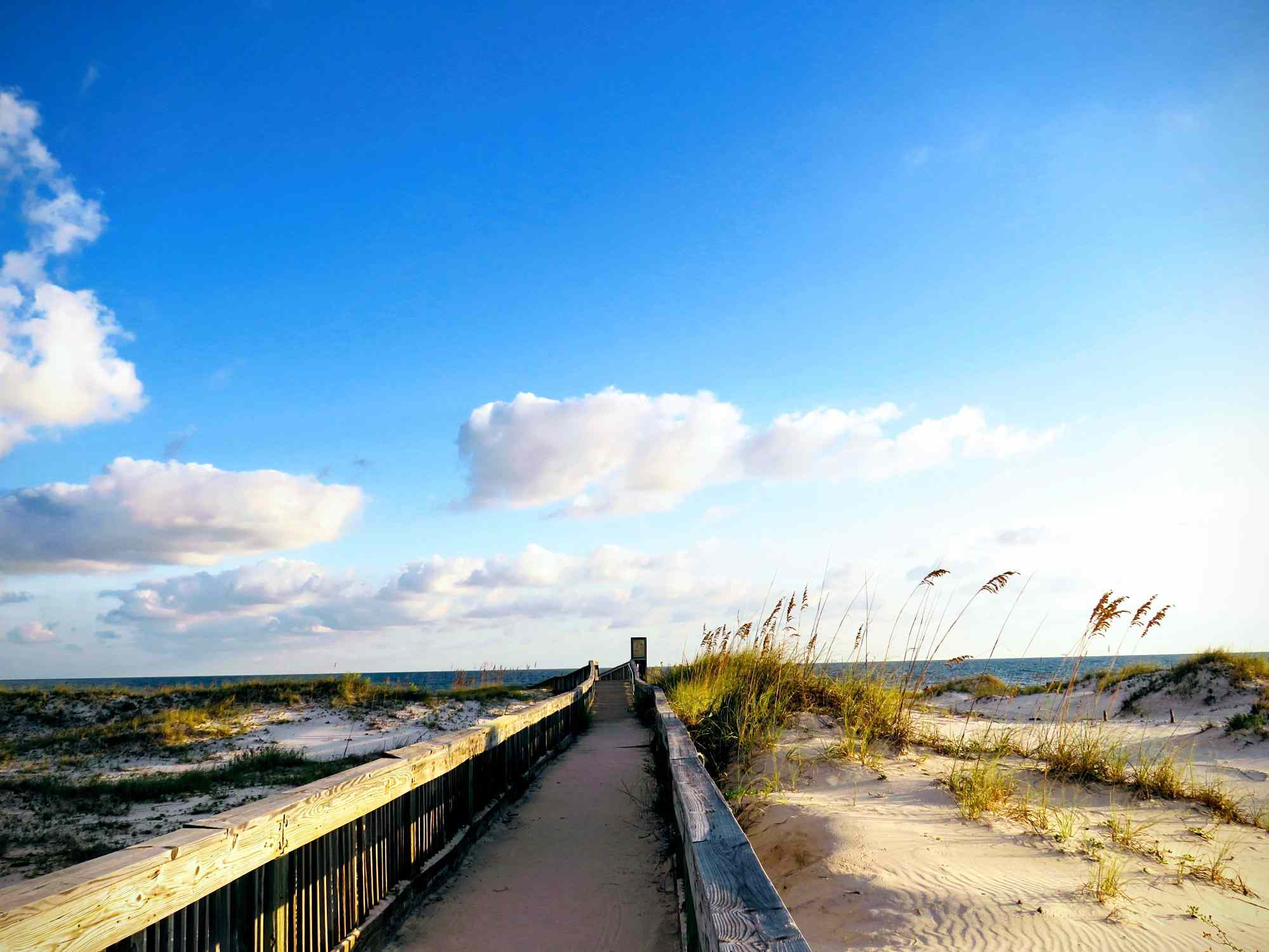 pathway leading to beach in Gulf Shores, Alabama