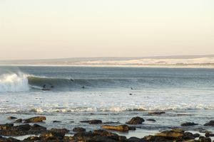 Surfers swimming in water, Elands Bay, Western Cape, South Africa