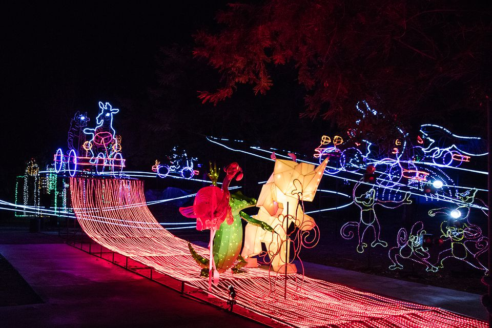 LA Zoo Lights in Griffith Park: The Complete Guide