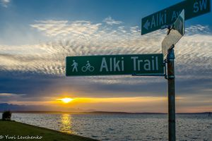 Alki Trail Seattle