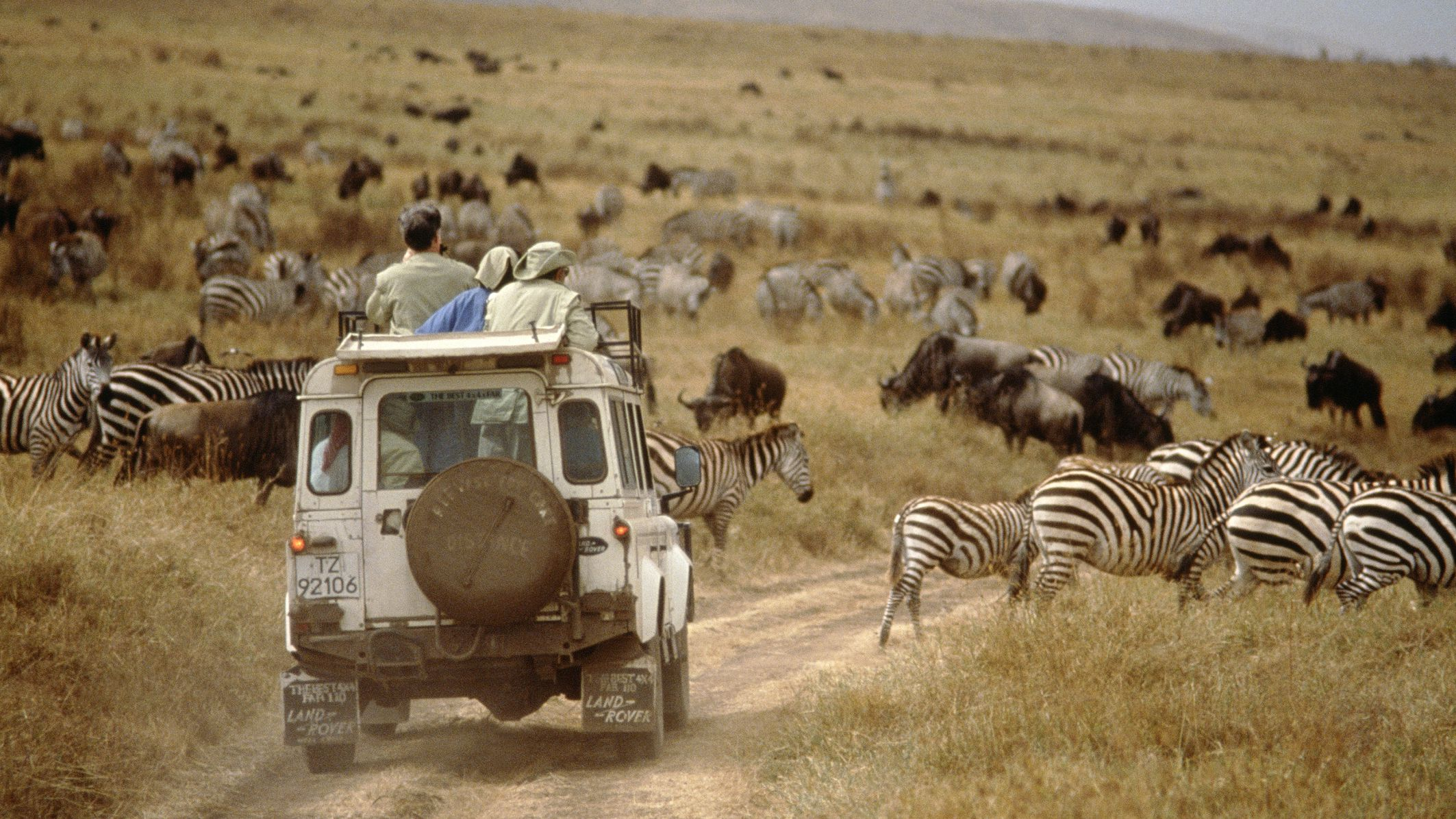 Inspirational Quotes About Africa Travel