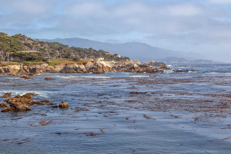 Vista desde el Cypress Point Lookout