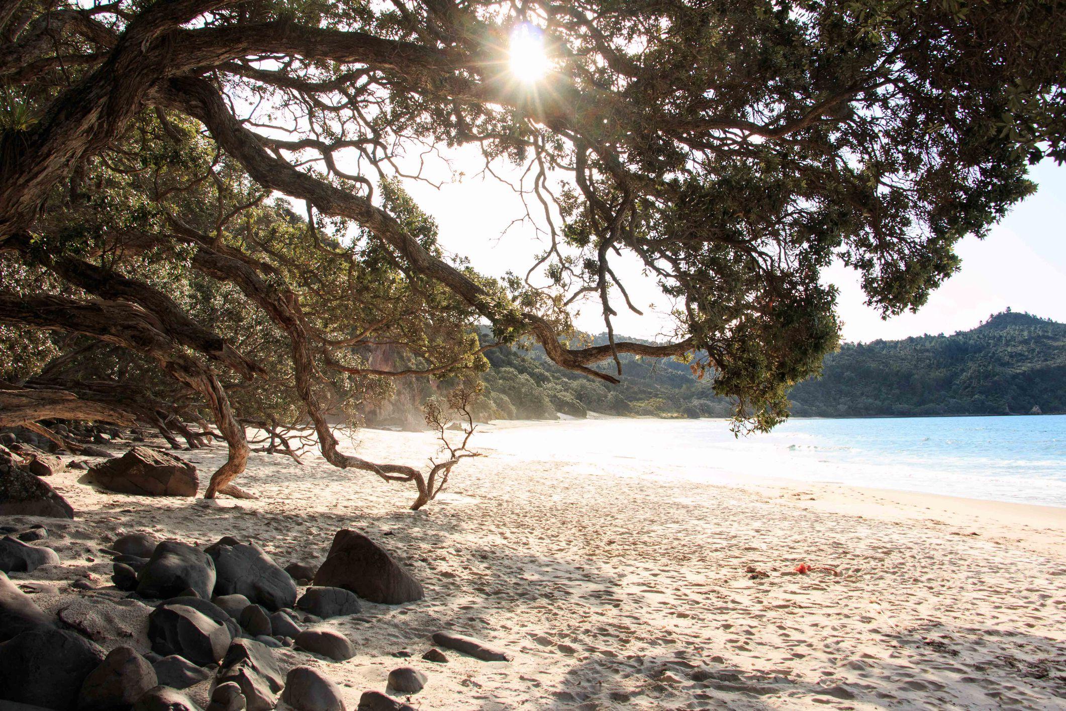 New Chums Beach, New Zealand