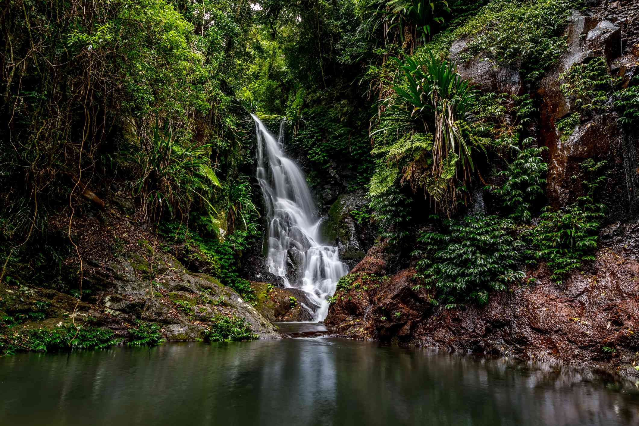 Elabana Falls in Lamington National Park