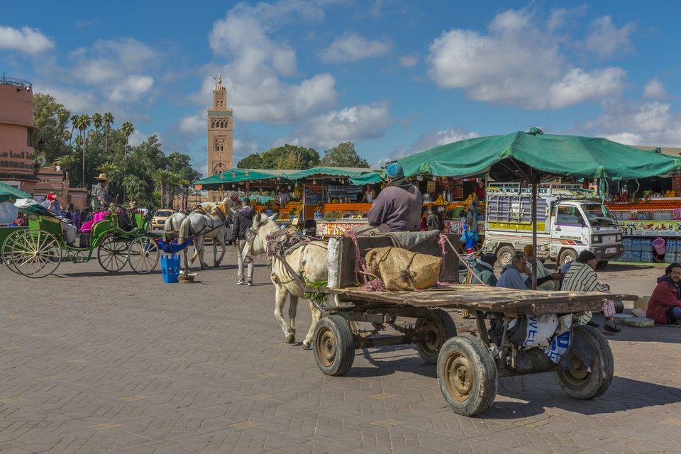 Caballo y carro en la plaza Jemaa el Fna (Djemaa el Fnaa)