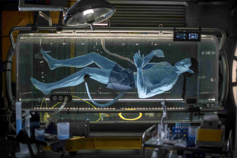 Avatar Flight of Passage ride