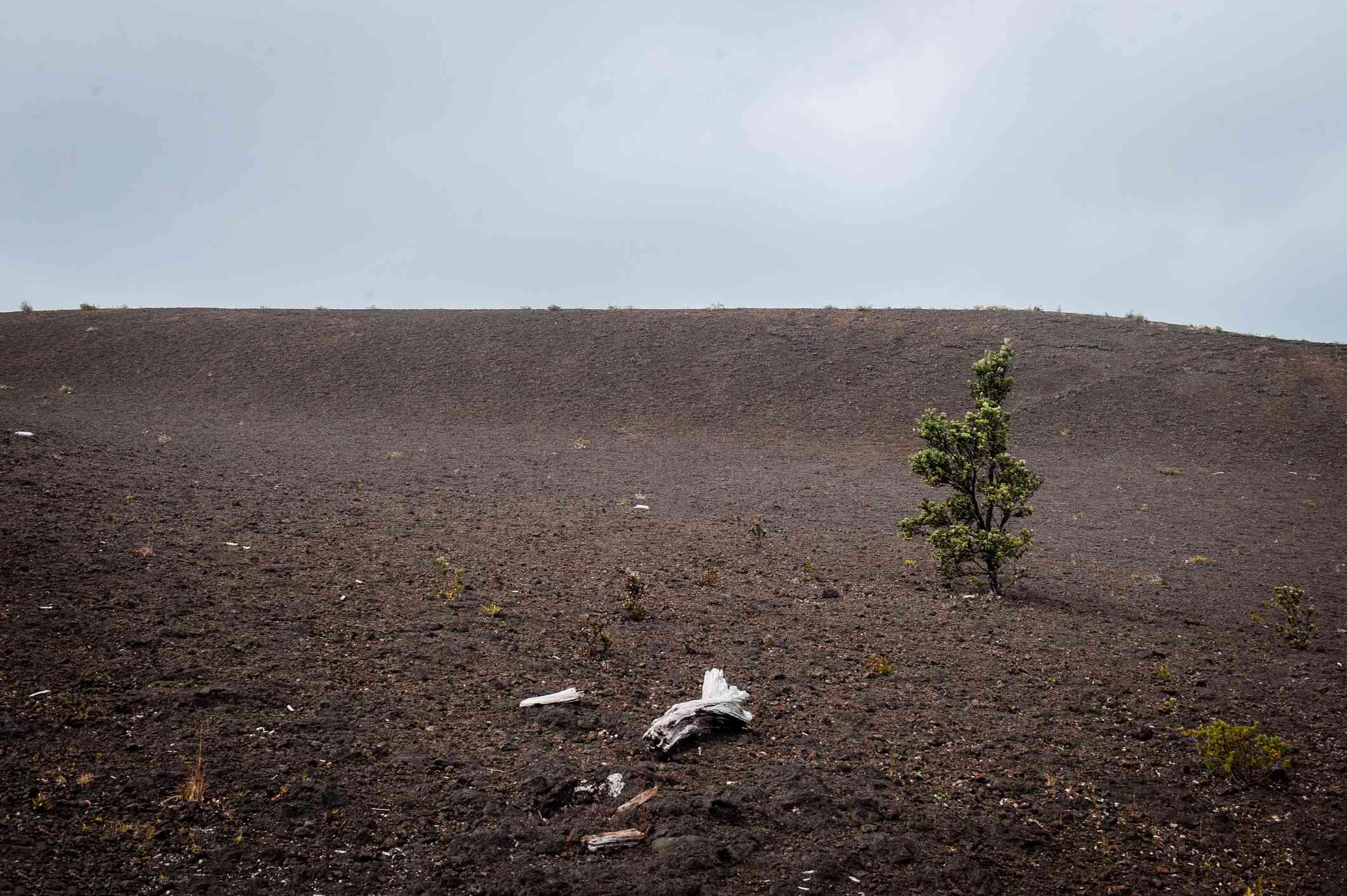Devastation Trail, Hawaii Volcanoes National Park