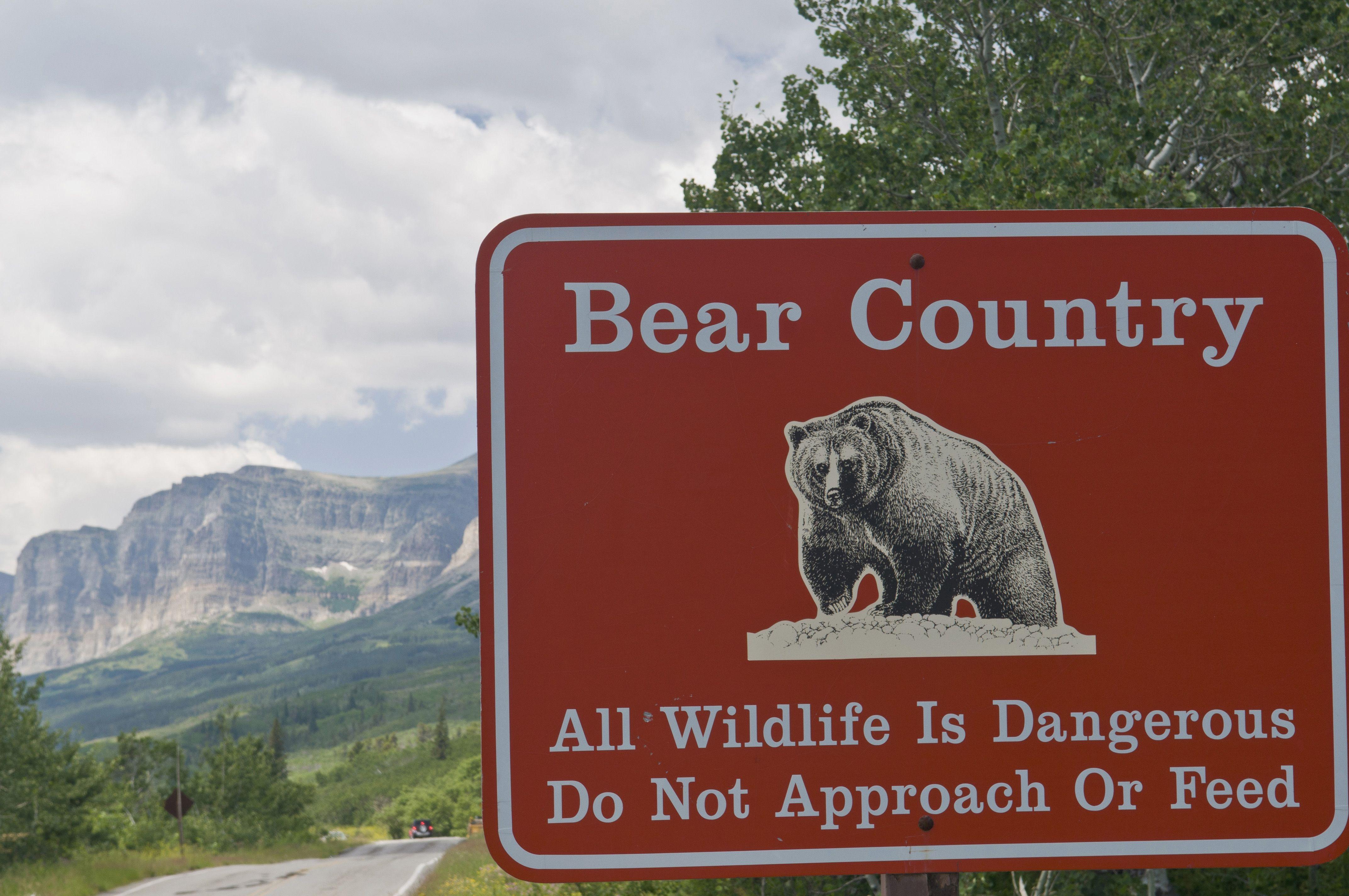 grizzly bear warning glacier national park montana usa 593c0f685f9b58d58ab727e6