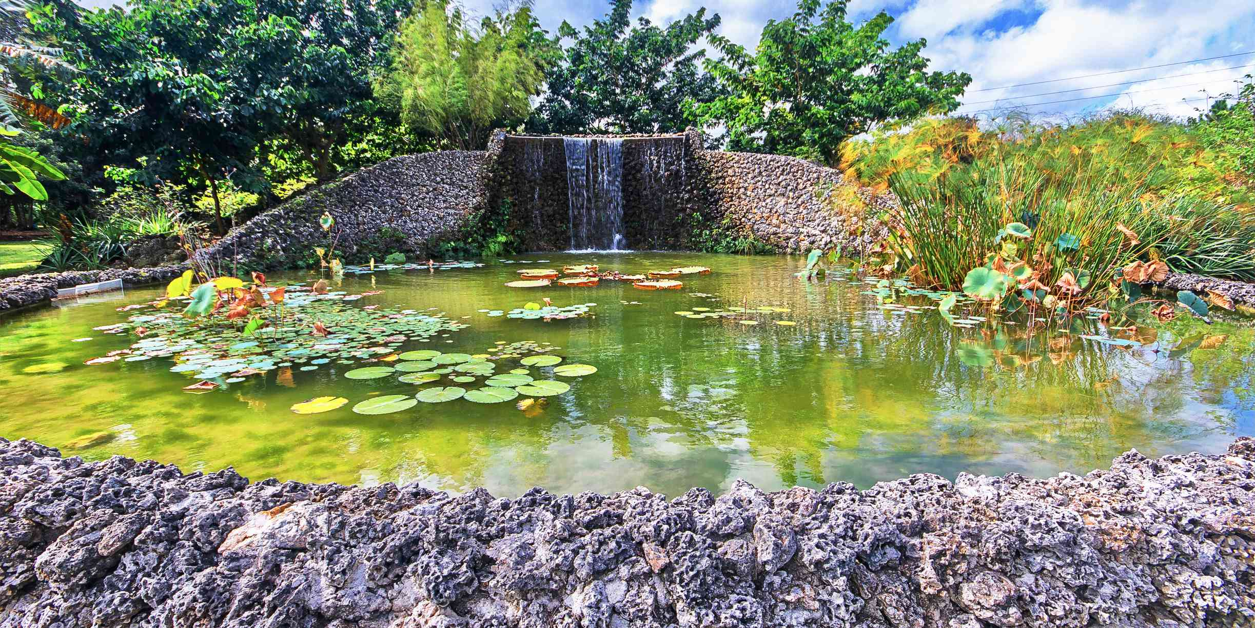 Cascada en el Parque de Frutas y Especias, Homestead