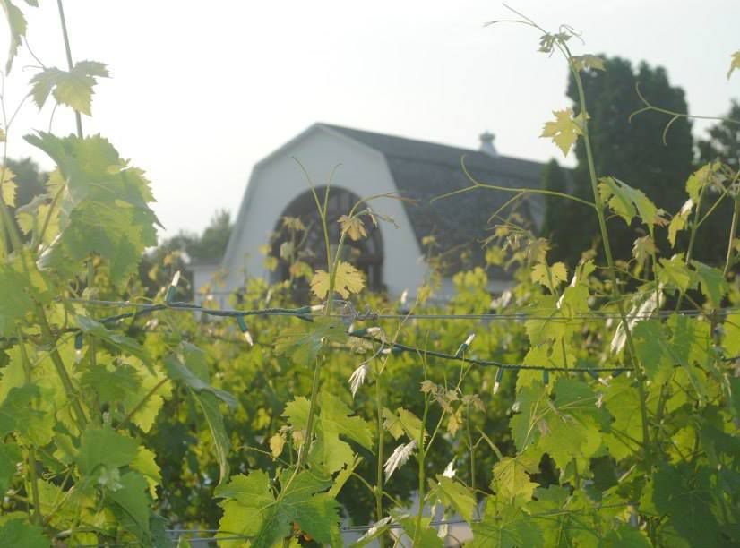 Best Wineries in the Hudson Valley