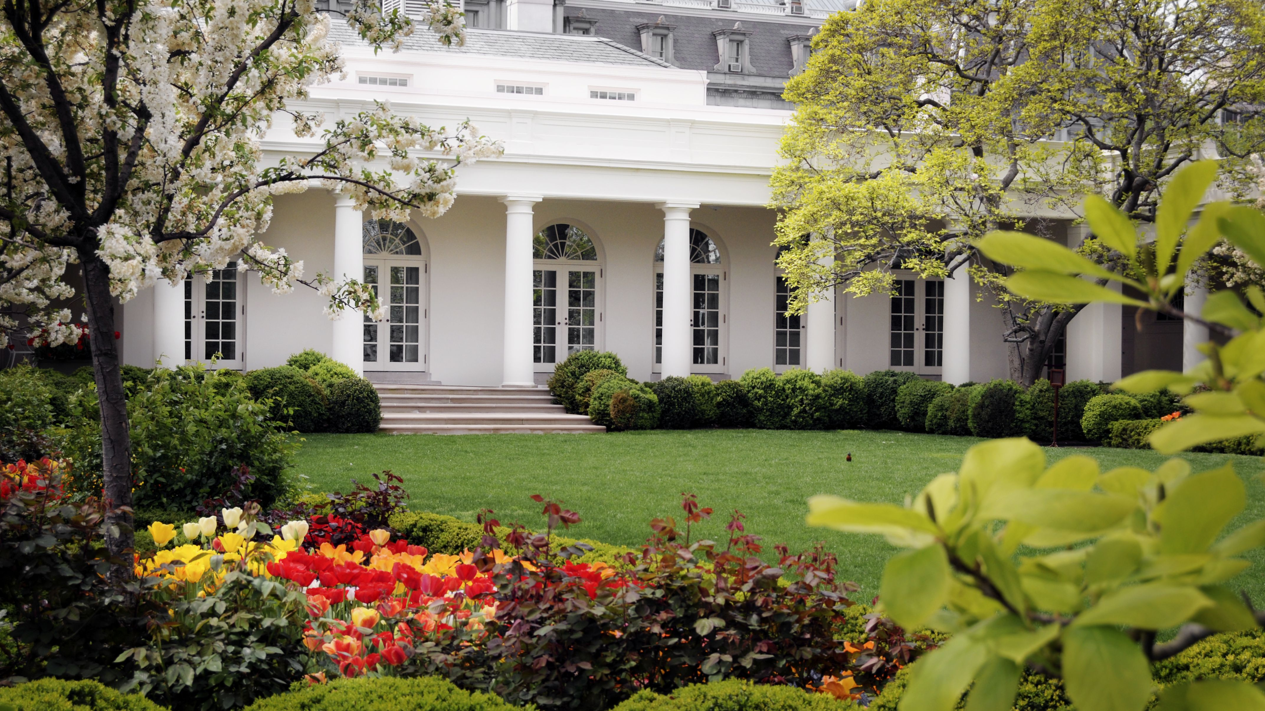 All About The White House Gardens
