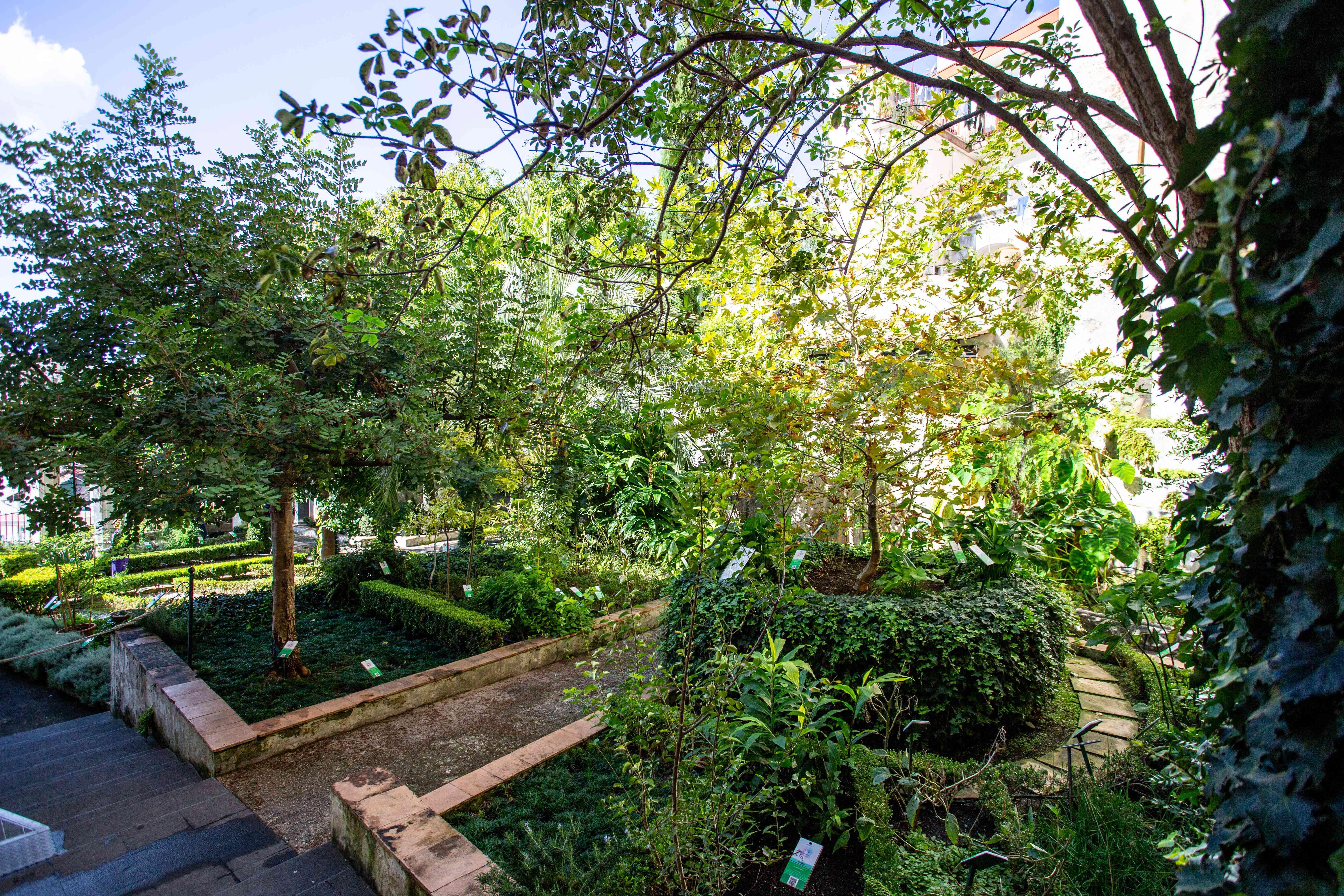 Minerva's Garden (Giardino della Minerva), Salerno, Italy