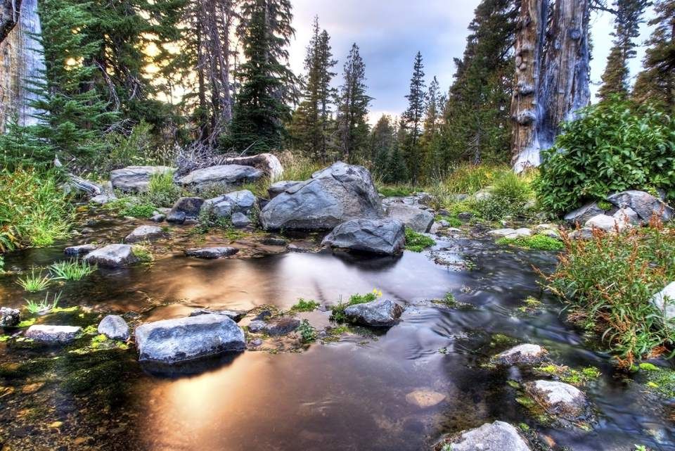 Mount Rose Wilderness near Lake Tahoe, Nevada.