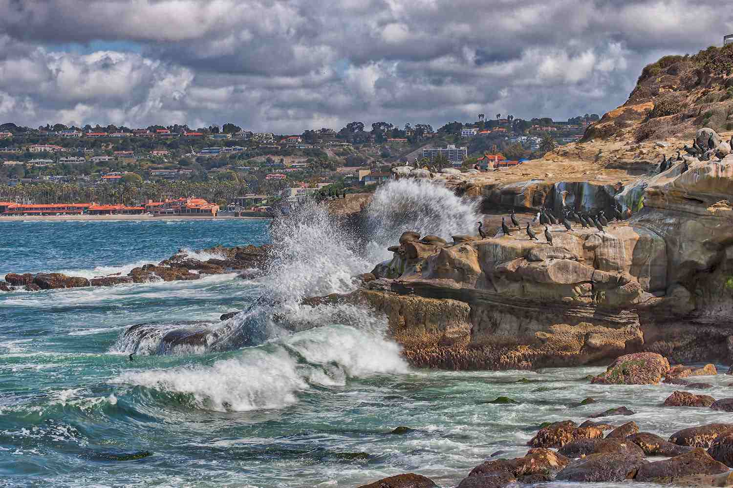 13 Things To Do In San Diego California