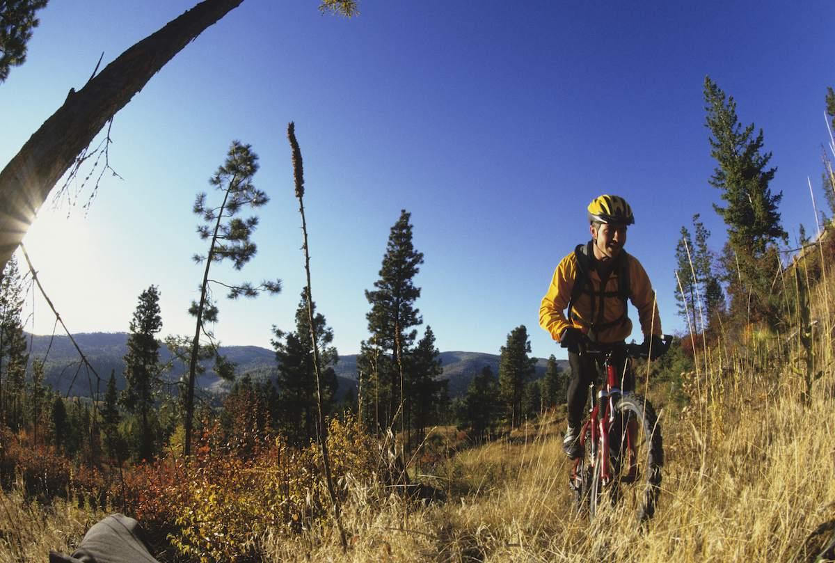 Mountain Biking West Yellowstone