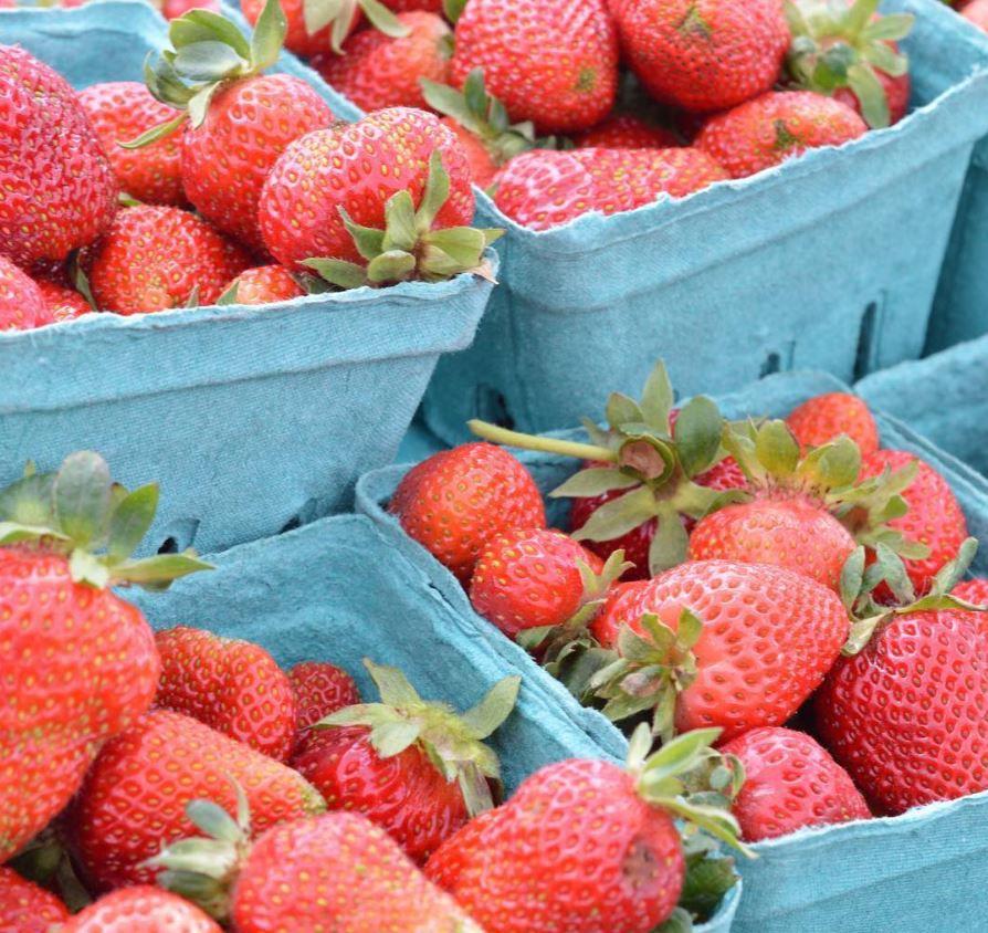 berries-market