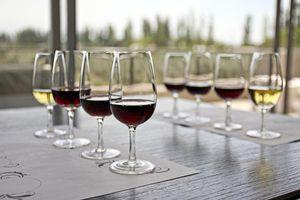 Glasses of wine at a wine tasting
