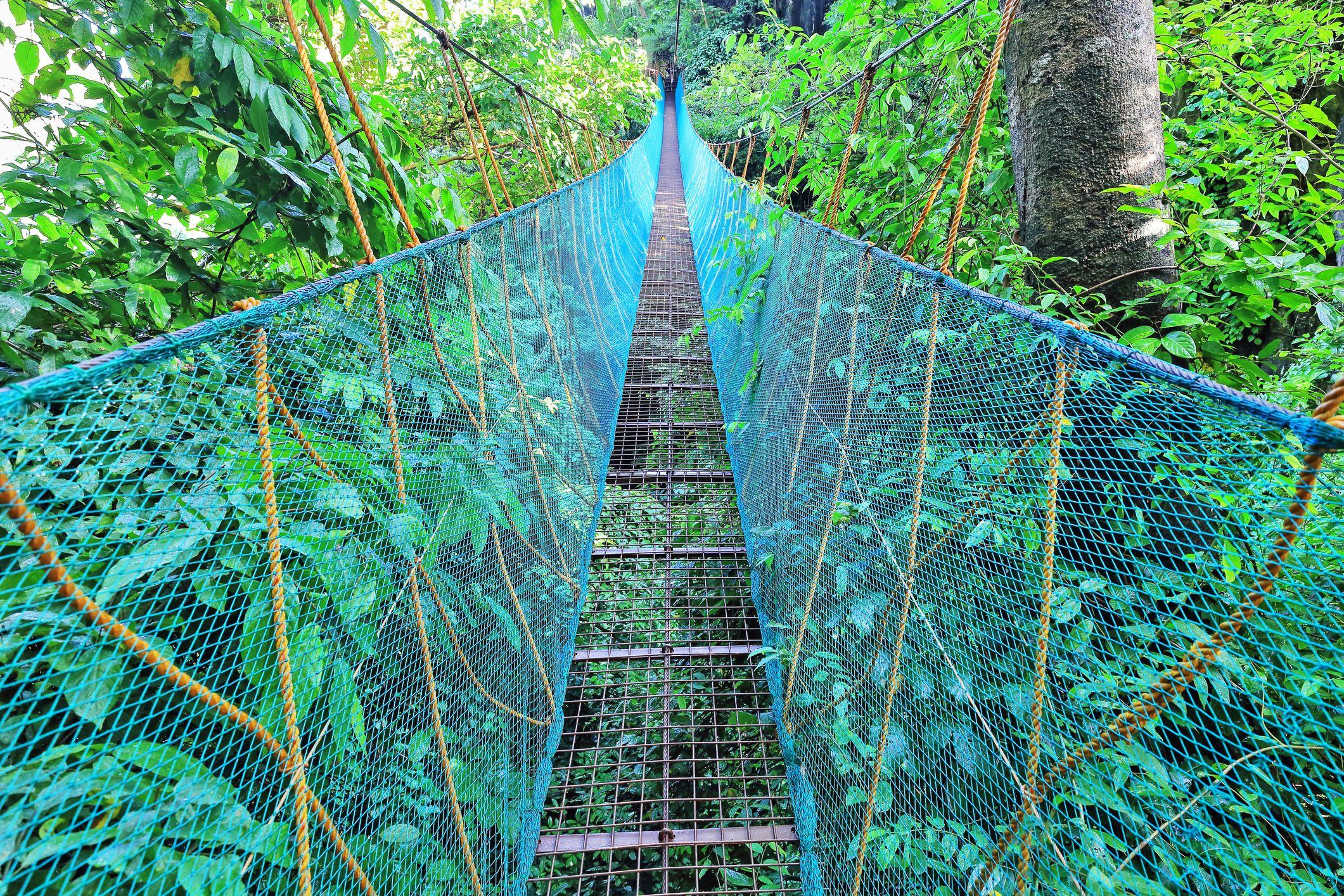 Hanging bridge on the El Nido Canopy Walk-Via Ferrata