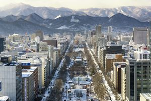 Sapporo City View