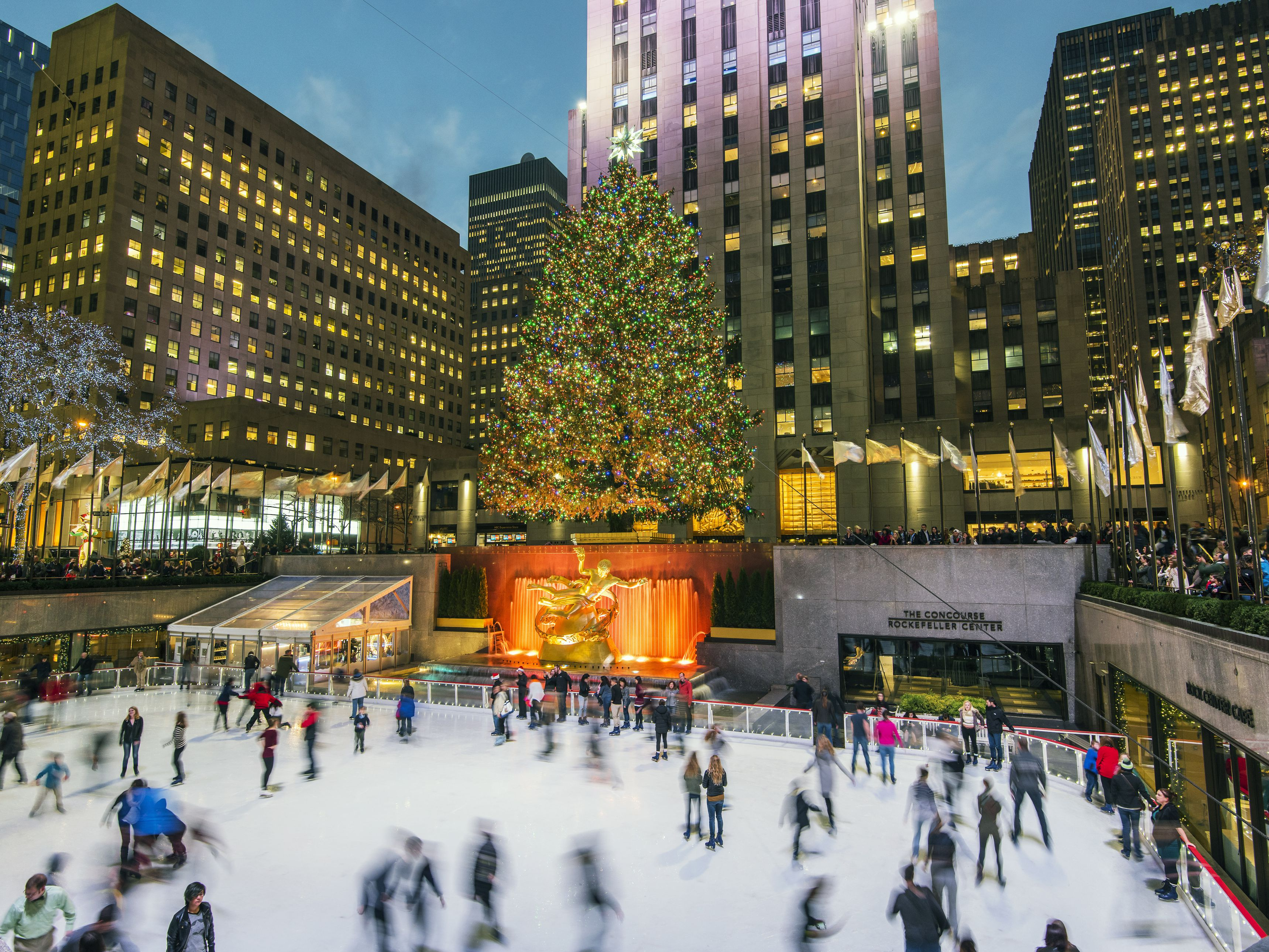 Rockefeller Christmas Tree 2019.Best Christmas Trees To See In Nyc