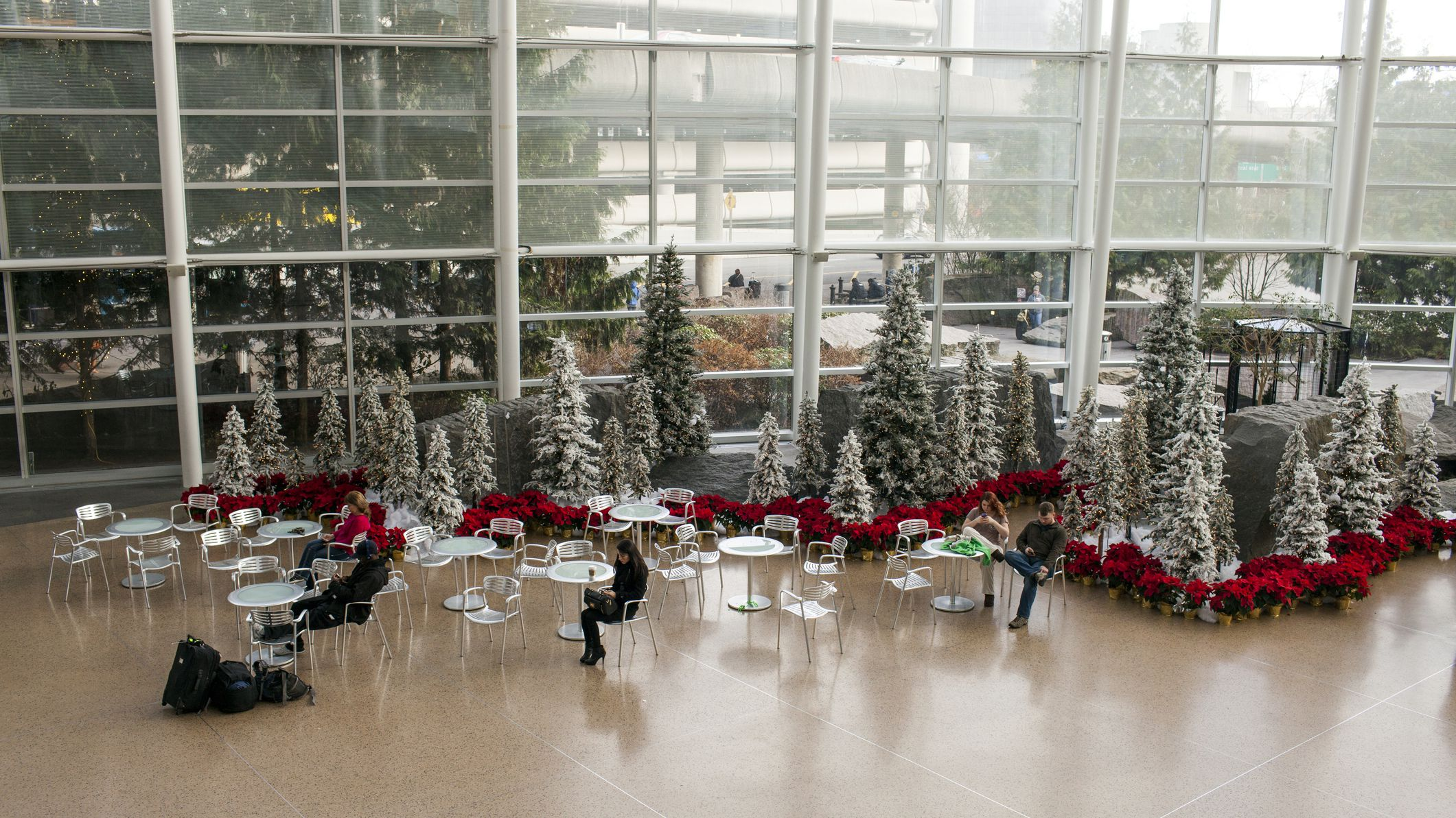 The Best Things to Do at Seattle-Tacoma International Airport