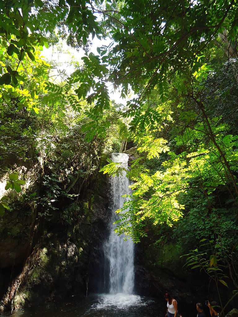 Cascada Parque Los Chorros