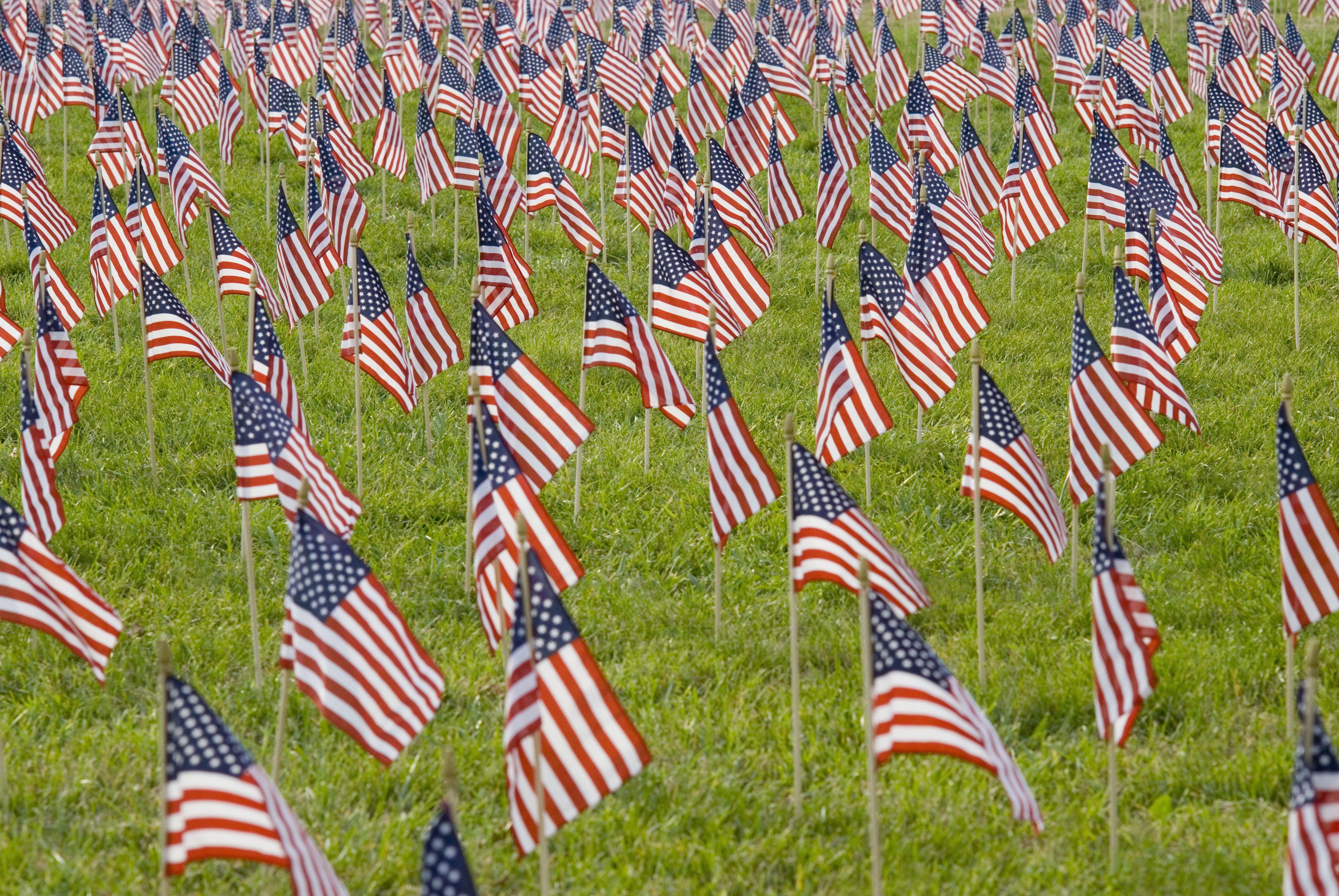 American flags displayed on The National Mall, Washington, DC