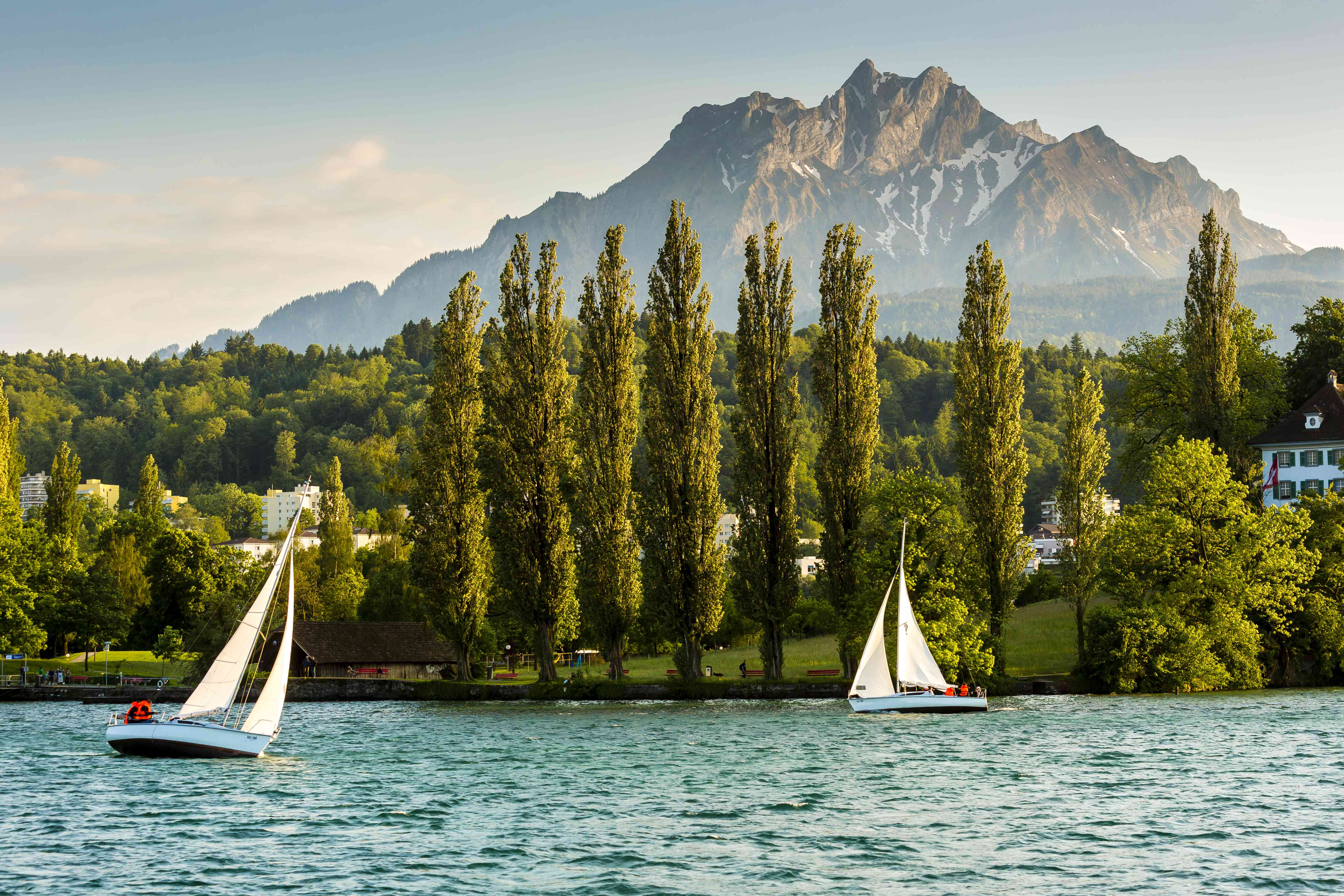 Sailboats on Lake Lucerne with Mt Pilatus in the background