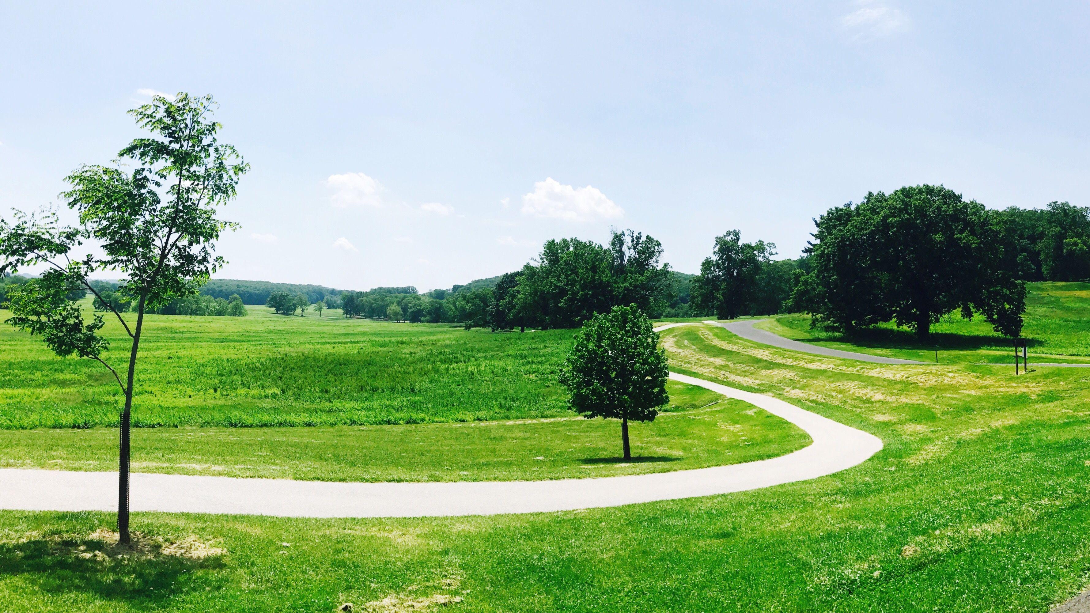 Golf Courses Along the Louisiana Audubon Golf Trail