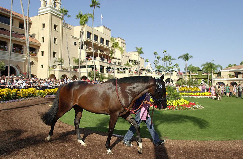 At the Del Mar Race Track