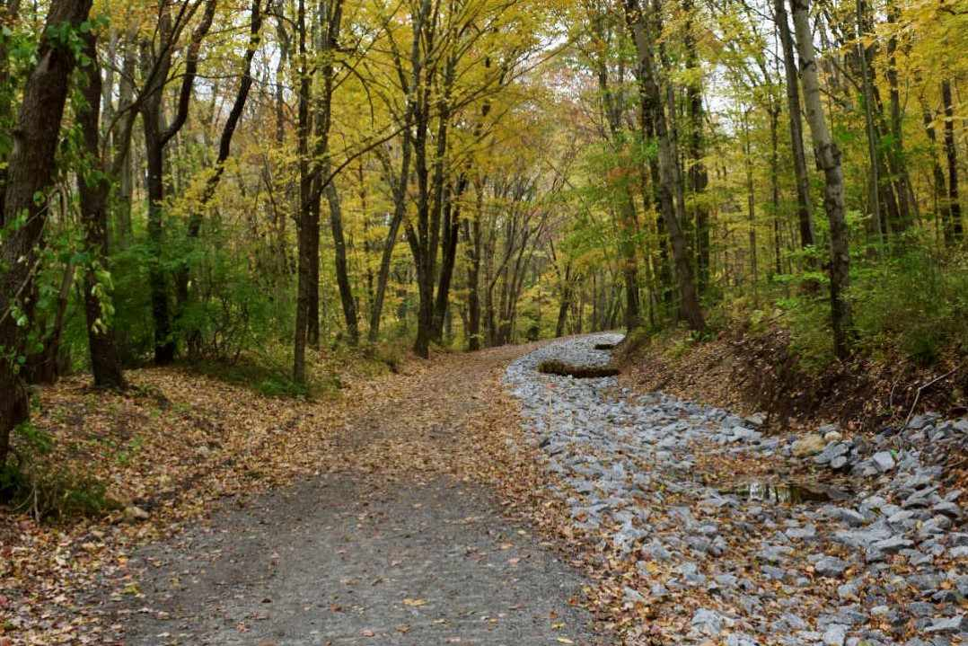 Airline Trail in CT