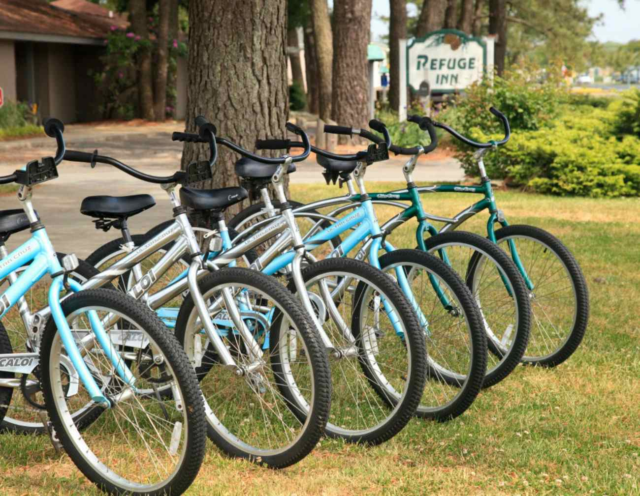 Bikes lined up as part of Bike Depot